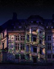 Son & lumière du Château Royal de Blois