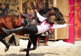 Spectacle de chevaux et rapaces à Chambord - Chambord