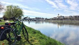 Location de vélo La Salamandre - Blois - Blois
