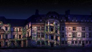 Son & lumière du Château Royal de Blois - Blois
