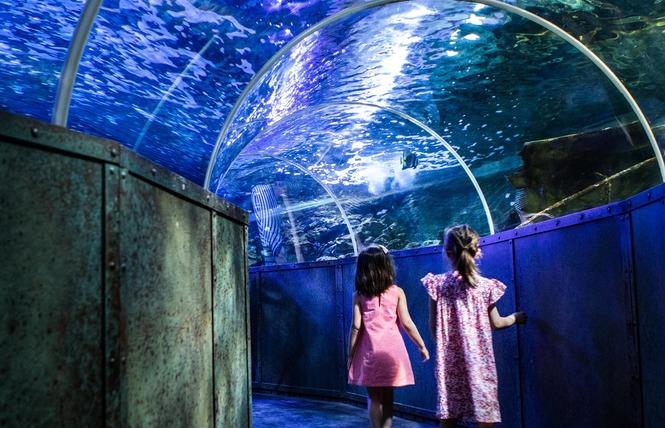 Grand Aquarium de Touraine 7 - Lussault-sur-Loire
