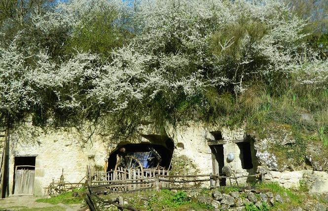La Vallée Troglodytique des Goupillières 7 - Azay-le-Rideau