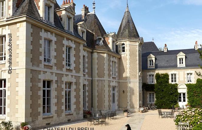 Château du Breuil 4 - Cheverny