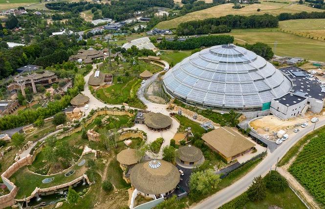 ZooParc de Beauval 6 - Saint-Aignan