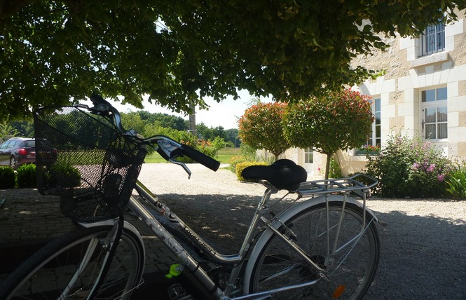 La Levraudière 17 - Cheverny