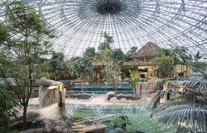 ZooParc de Beauval 21 - Saint-Aignan