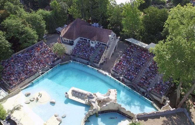 ZooParc de Beauval 10 - Saint-Aignan
