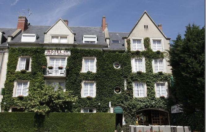 Anne de Bretagne 3 - Blois
