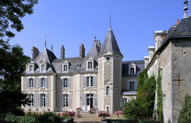 Château du Breuil 2 - Cheverny